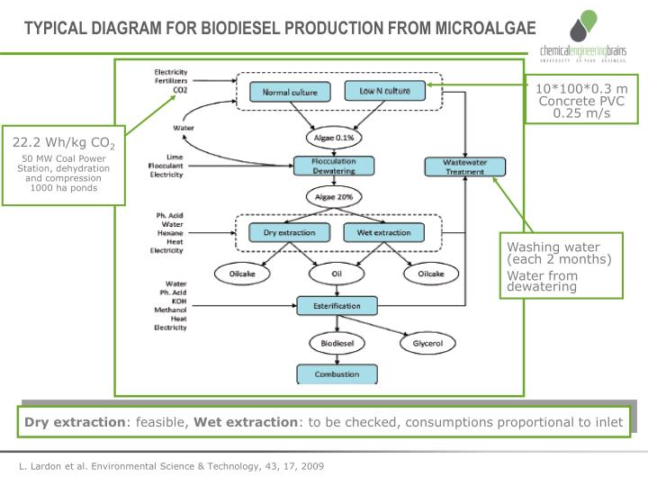 TYPICAL DIAGRAM FOR BIODIESEL PRODUCTION FROM MICROALGAE