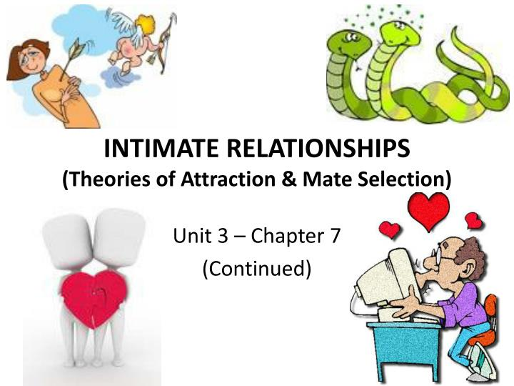 intimate relationships theories of attraction mate selection n.