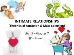 intimate relationships theories of attraction mate selection