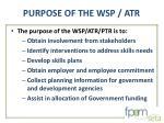 purpose of the wsp atr