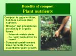 benefits of compost plant nutrients