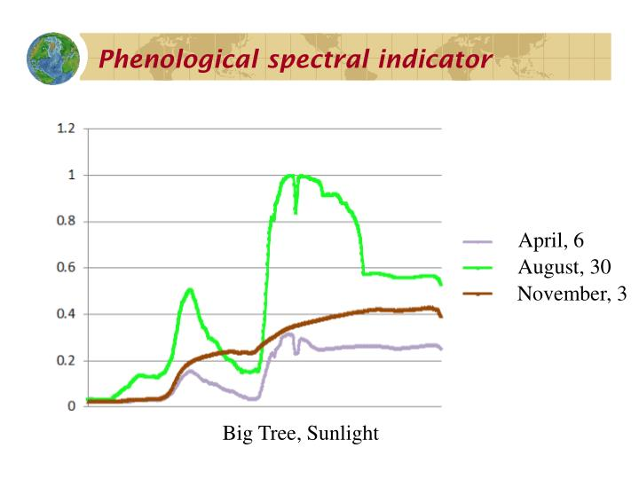 Phenological spectral indicator