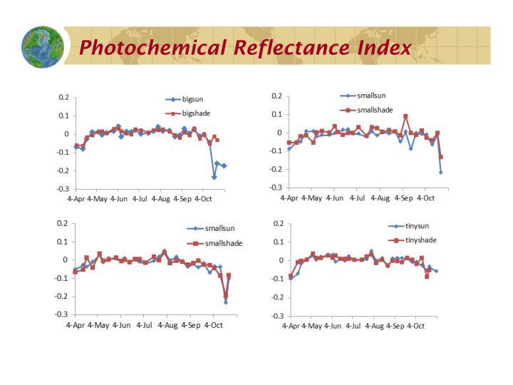 Photochemical Reflectance Index