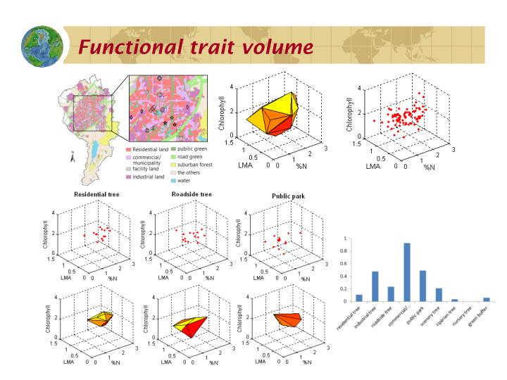 Functional trait volume