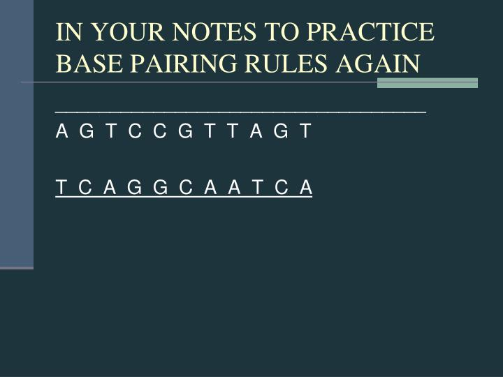 IN YOUR NOTES TO PRACTICE BASE PAIRING RULES AGAIN