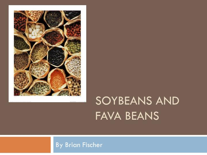 soybeans and fava beans n.