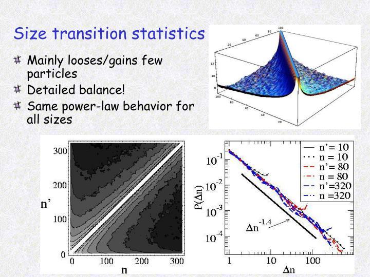 Size transition statistics