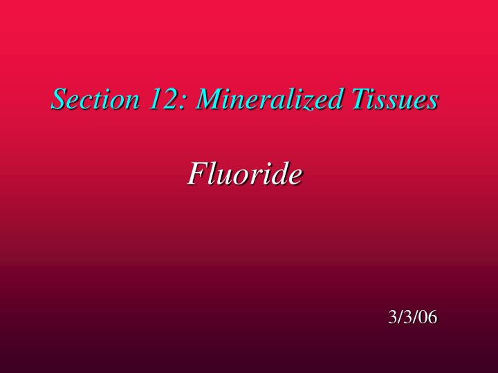 Section 12: Mineralized Tissues