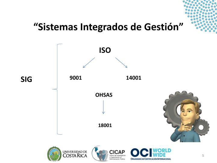"""""""Sistemas Integrados de Gestión"""""""