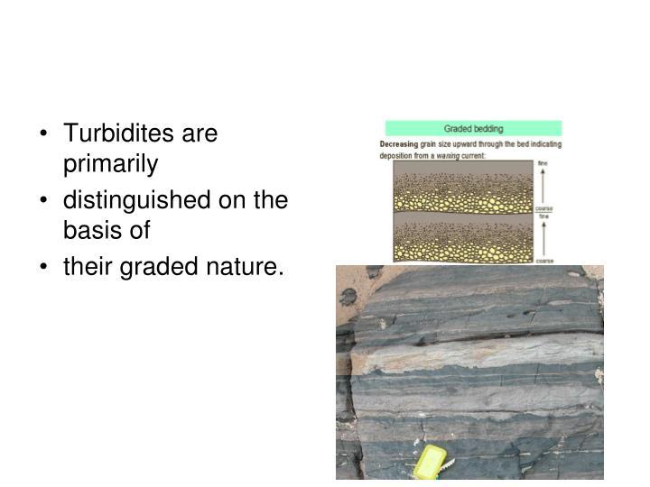 Turbidites are primarily