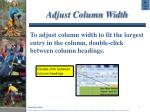 adjust column width
