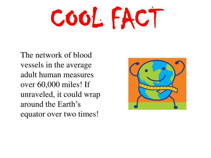 COOL FACT