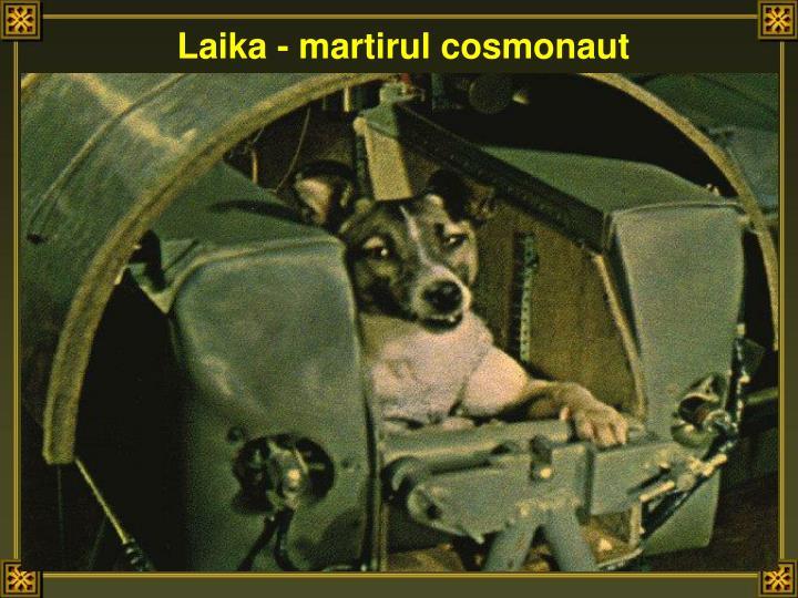 Laika - martirul cosmonaut