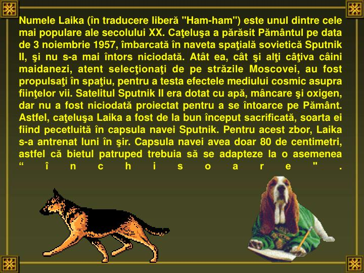 Numele Laika (