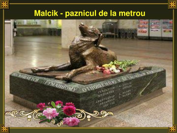 Malcik - paznicul de la metrou