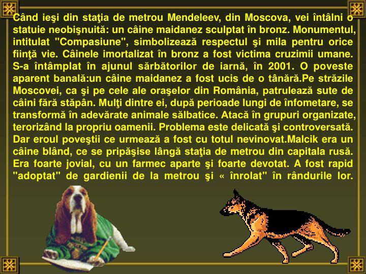 """Când ieşi din staţia de metrou Mendeleev, din Moscova, vei întâlni o statuie neobişnuită: un câine maidanez sculptat în bronz. Monumentul, intitulat """"Compasiune"""", simbolizează respectul şi mila pentru orice fiinţă vie."""