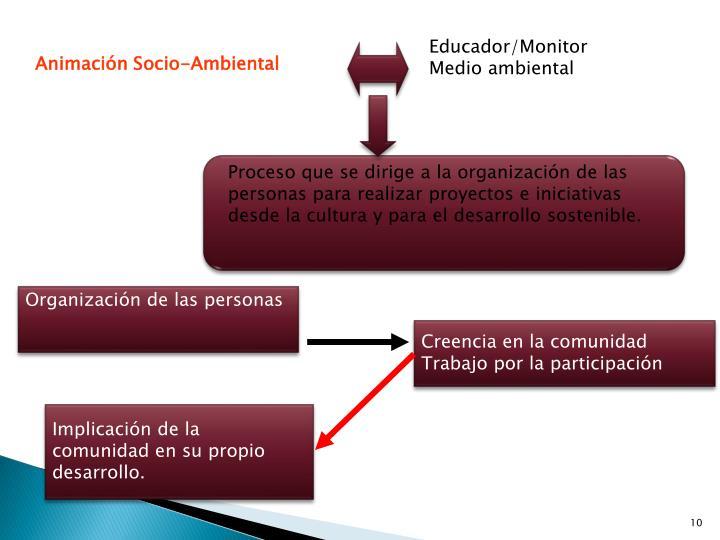 Educador/Monitor