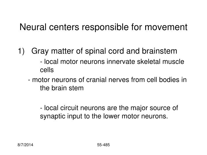 Neural centers responsible for movement1