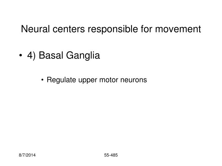 Neural centers responsible for movement