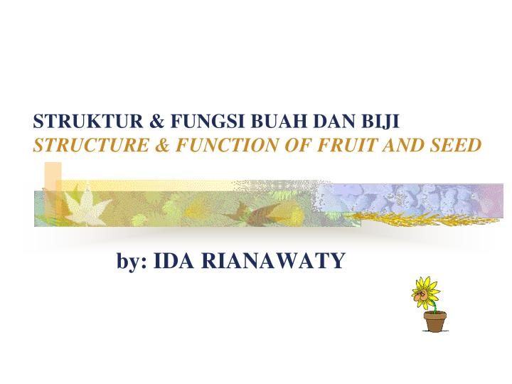 struktur fungsi buah dan biji structure function of fruit and seed n.