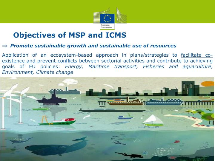 Objectives of MSP and ICMS