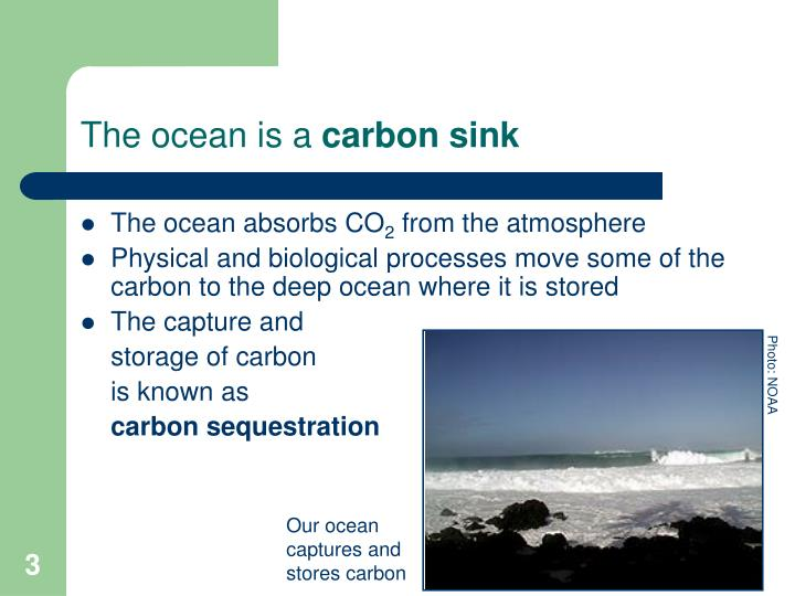The ocean is a carbon sink