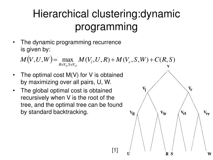 Hierarchical clustering:dynamic programming