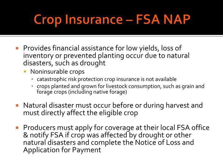 Crop Insurance – FSA NAP