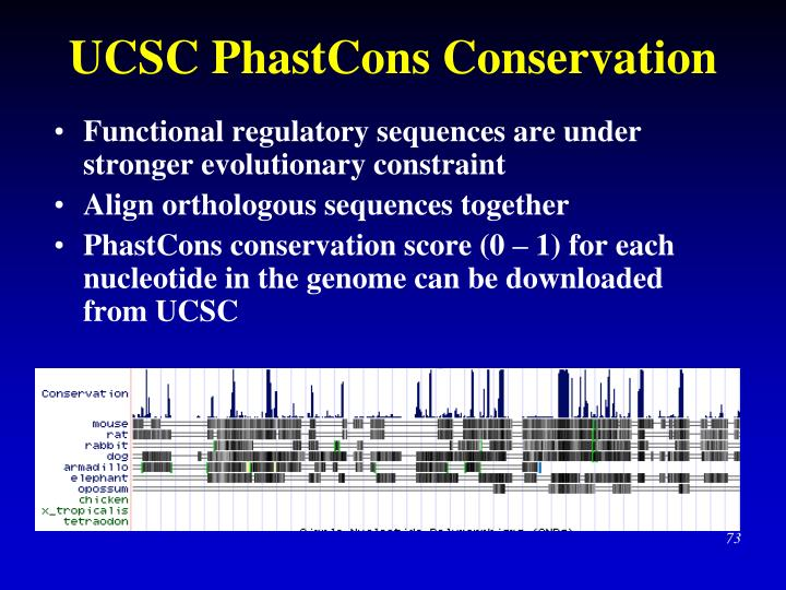 UCSC PhastCons Conservation