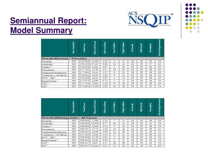Semiannual Report: