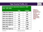 vigo county profile 6 5