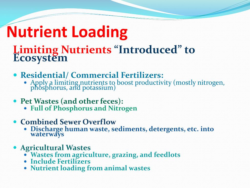 PPT - Ecology: Water and Nutrient Cycles PowerPoint