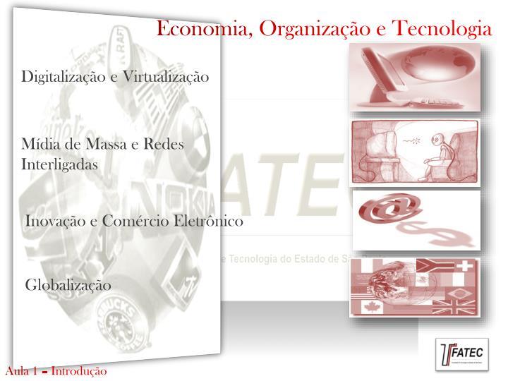 Economia, Organização e Tecnologia