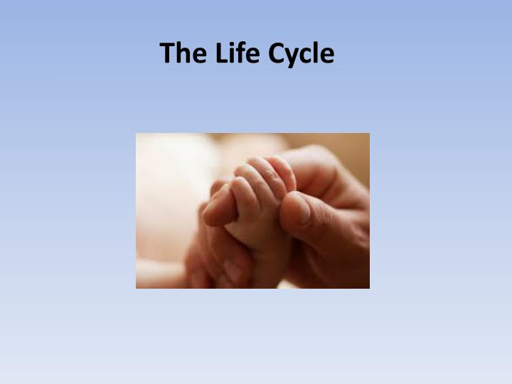 the mircle of life prenatal development Life's greatest miracle nova pbs nova presents the first film ever made of the incredible chain of events which turns a sperm and an egg into a newborn baby.