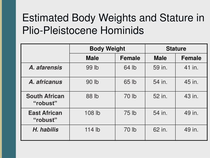 Estimated Body Weights and Stature in Plio-Pleistocene Hominids