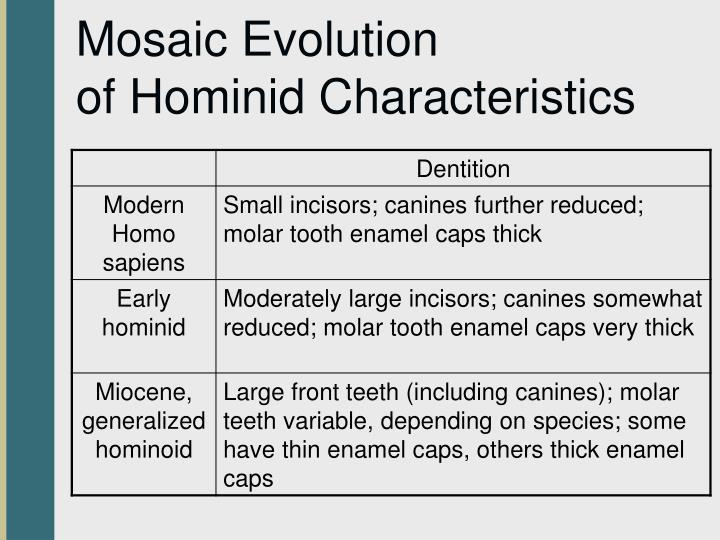 Mosaic Evolution