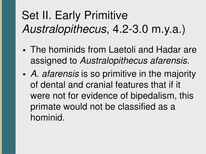 Set II. Early Primitive