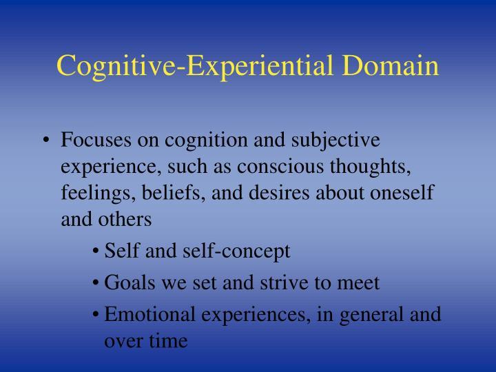Cognitive-Experiential Domain
