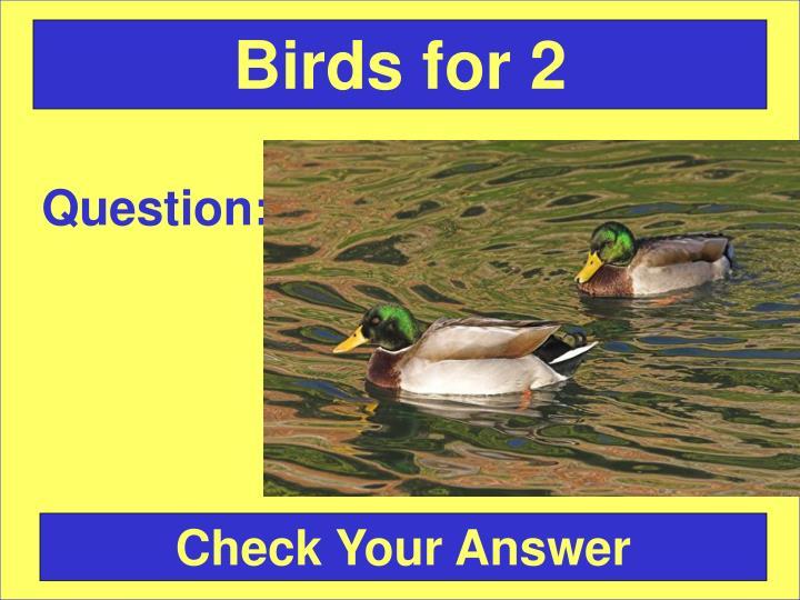 Birds for 2