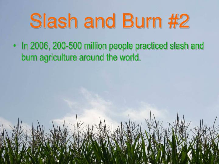 Slash and Burn #2