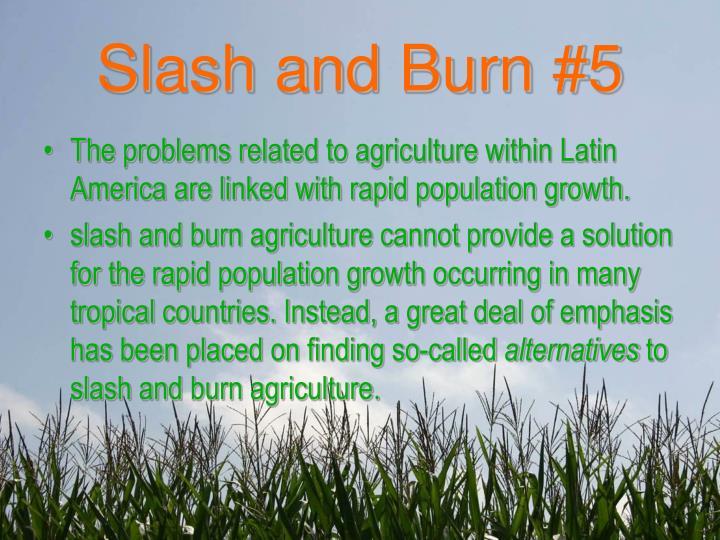 Slash and Burn #5
