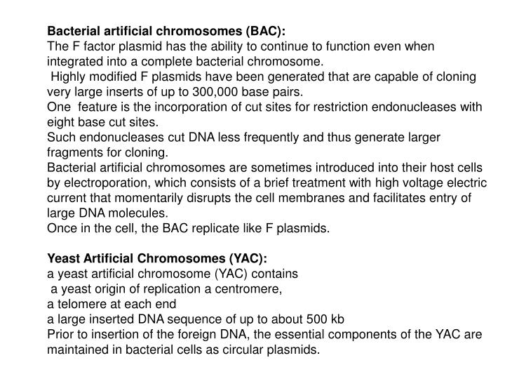 Bacterial artificial chromosomes (BAC):