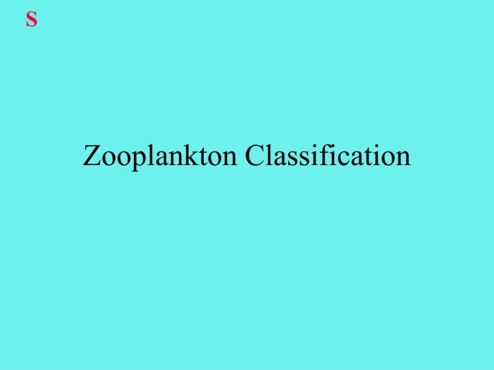 Zooplankton classification