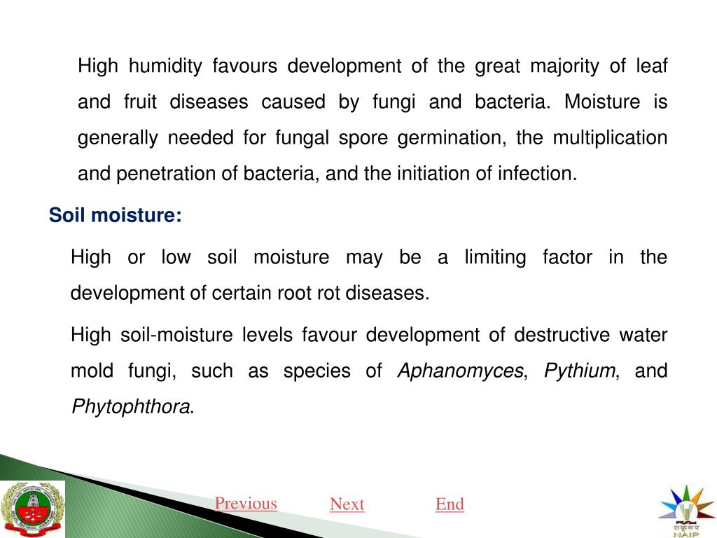 PPT - PLANT DISEASE AND ITS IMPORTANCE PowerPoint