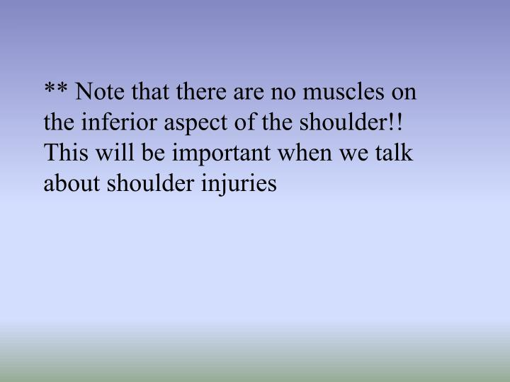 ** Note that there are no muscles on the inferior aspect of the shoulder!! This will be important when we talk about shoulder injuries