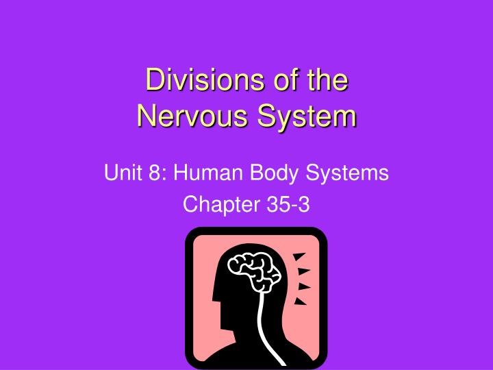 divisions of the nervous system n.