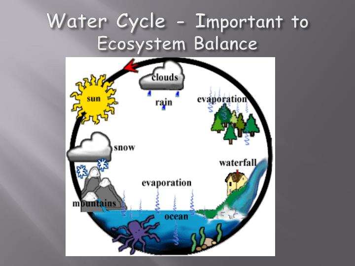 Water Cycle - I