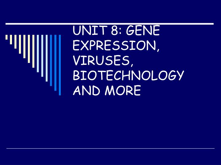 unit 8 gene expression viruses biotechnology and more n.