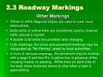 2 3 roadway markings4