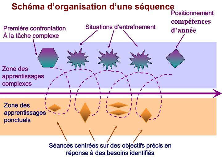 Schéma d'organisation d'une séquence